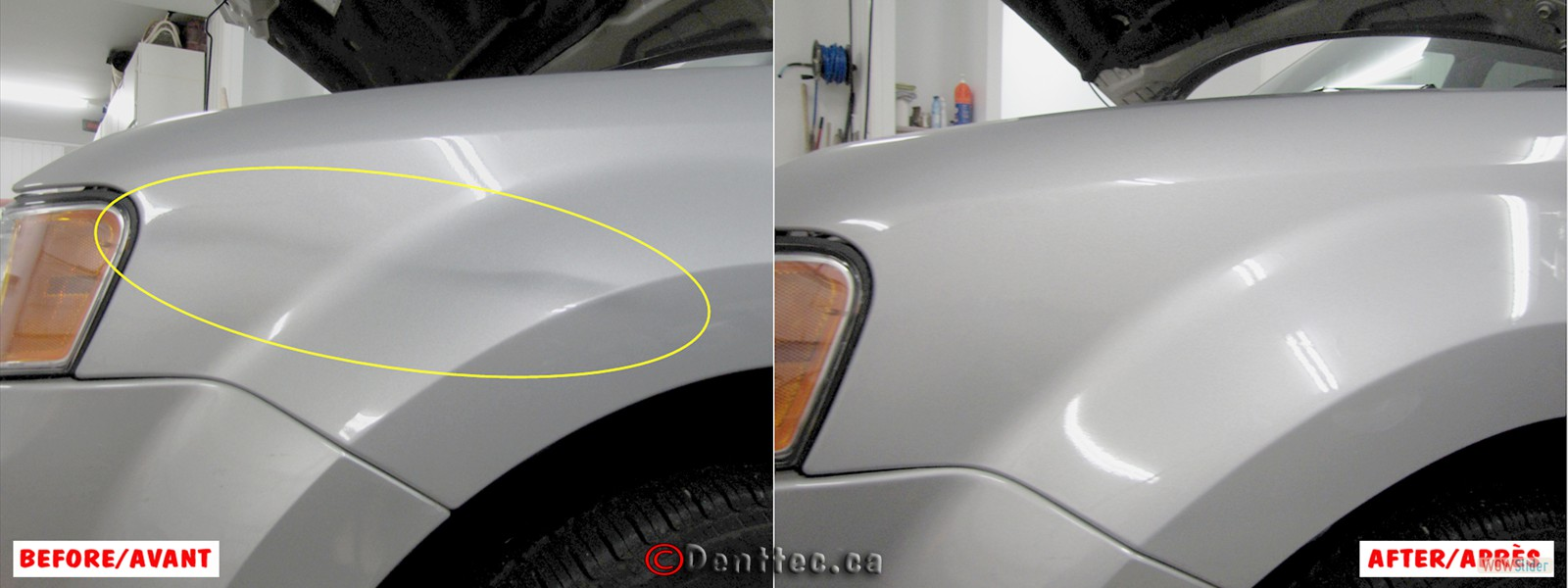 DentTec_38 Long Dent Front Fender