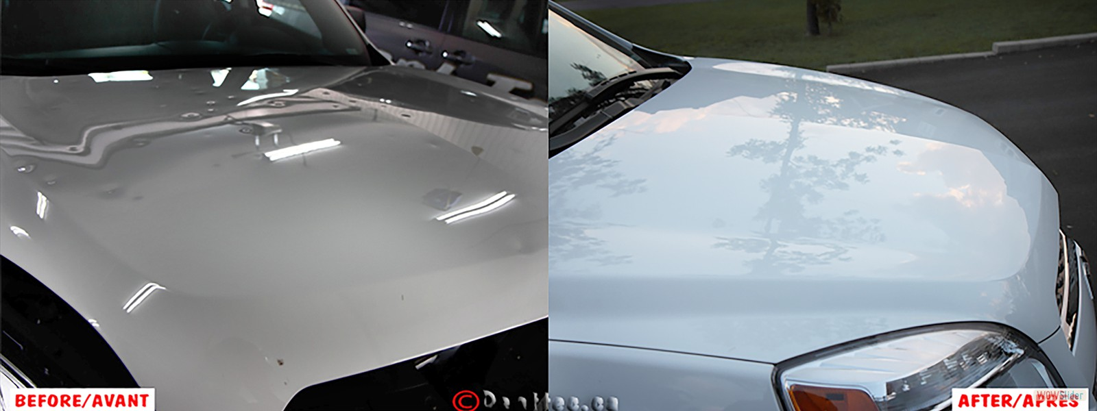DentTec_44 Hail Damage Hood